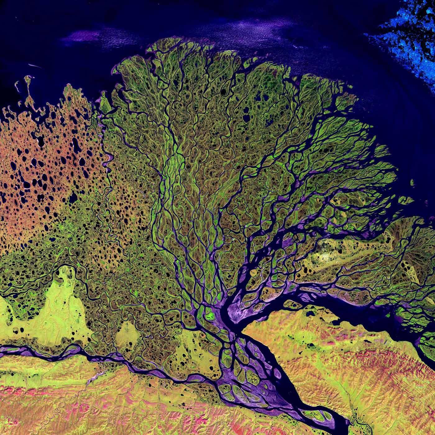 Flußdelta-mittelweb